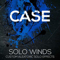 CASE Solo Woodwinds FX